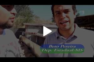 Embedded thumbnail for Costelada Pantaneira em Rio Negro - MS